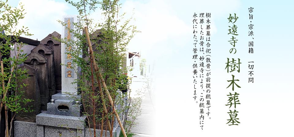 樹木葬墓による永代供養